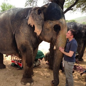 Visiting with elephants in India