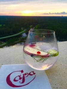 Capa - Dinner at the Four Seasons